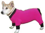 Dog Sunsuit